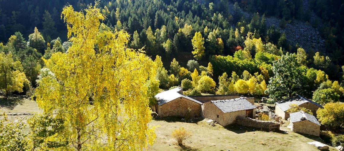 activitats-cultura-de-les-valls-andorra-pirineus